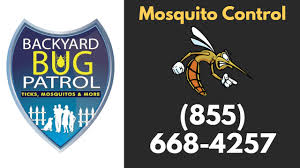mosquito control ashburn va backyard bug patrol youtube