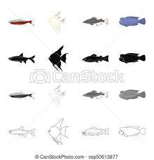 vectors illustration of different types of aquarium and marine