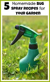 5 Natural Diy Recipes For by 5 Homemade Bug Spray Recipes For Your Garden