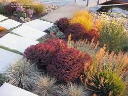landscape designer anselmo dig your garden creates beautiful