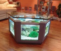 fish tank coffee table diy aquarium table diy stuffwecollect com maison fr