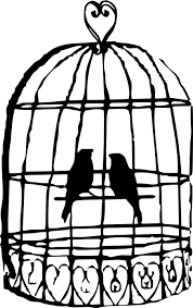uccelli in gabbia uccelli in gabbia piume di 盞 grafica vettoriale gratuita su pixabay