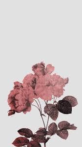 tumblr wallpaper maker aesthetic background pink tumblr wallpaper image 4962185 by