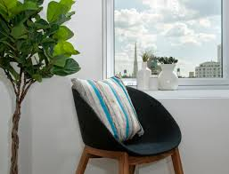 window table for plants tips and tricks for using plants in modern interior design plant