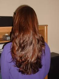 back of hairstyle cut with layers and ushape cut in back pictures on u shaped layered haircut cute hairstyles for girls