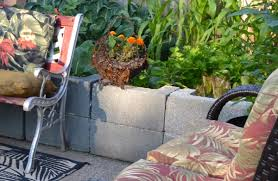 are cinder blocks ok for vegetable gardens answers to that