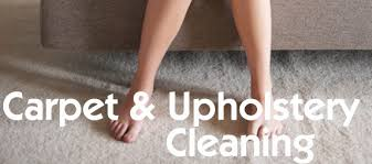 do you need carpet or upholstery cleaning mike bryan carpet cleaning