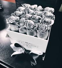silver roses 18 best beautiful eternity roses images on luxury