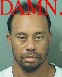 Damn Meme - kendrick lamar s damn album cover tiger woods mugshot know