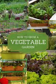 Gifts For Vegetable Gardeners by 130 Best Edibleterrace Posts Featured Content Images On
