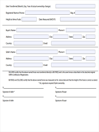 Blank Bill Of Sale Form For Car by 5 Horse Bill Of Sale Forms Free Sample Example Format Download