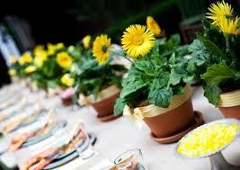 Daisy Centerpiece Ideas by 14 Best Gerber Daisy Wedding Images On Pinterest Gerber Daisies