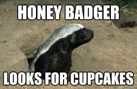 Honey Badger Meme - honey meme 28 images honey badger memes honey memes best