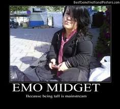 Emo Band Memes - amazing emo band memes mid s demotivational posters images kayak