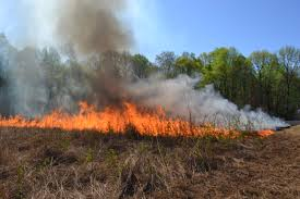 Wildfire Suppression Equipment by Delaware Forest Service Offers Volunteer Fire Grants State Of