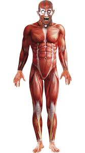scary costume skinned alive anatomy costume scary costumes for men scary