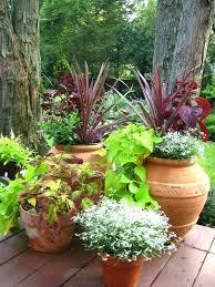 Herb Container Gardening Ideas Deck Herb Garden Ideas Herb Container Gardens Deck Herb Garden