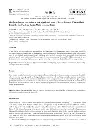 cullo grosso hyphessobrycon petricolus a new species pdf available