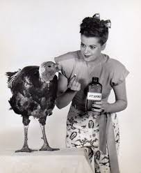 a vintage pin up guide to a happy thanksgiving flashbak
