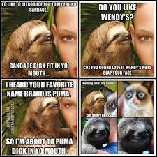 Asthma Sloth Meme - 0c379631993d6a7234d6c3c4afbb5eb7 jpg 960 960 pixels just not right