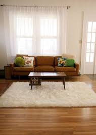 White Accent Rug 10 Best Living Room Images On Pinterest Area Rugs Ivory And