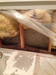 is spraying peroxide on studs with mold enough home improvement