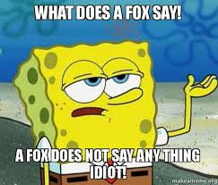 What Did The Fox Say Meme - what does a fox say a fox does not say any thing idiot make