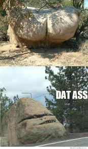 Dat Ass Cat Meme - dat rock ass weknowmemes