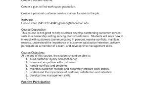 Good Resume Objectives For Customer Service with Experience     Dawtek Resume and Esay Good Resume Objectives For Customer Service with Experience