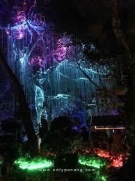 avatar paradise in penang avatar secret garden onlypenang com