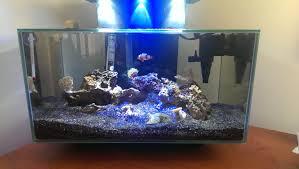 fluval edge marine light update on my fluval edge nano reef aquariums