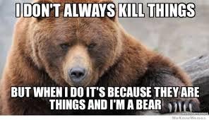 Funny Bear Memes - crazy funny bear memes daily funny memes