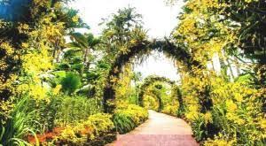 Singapore Botanic Gardens Location Singapore Botanic Garden Easybook