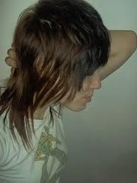 70 s style shag haircut pictures 70s shag shag style haricut back in fashion please read blog