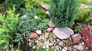 small rock gardens pictures a small rock garden in the corner of a