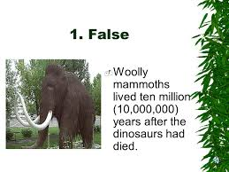 woolly mammoths woolly mammoths