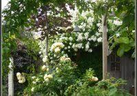 garten und landschaftsbau hamm kley garten und landschaftsbau hamm garten house und dekor