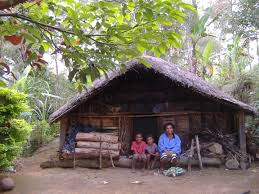 enga traditional house papua new guinea maison traditionelle