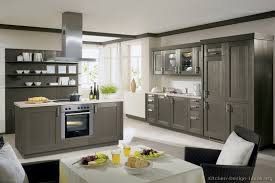 modern colors for kitchen cabinets pictures of kitchens modern gray kitchen cabinets