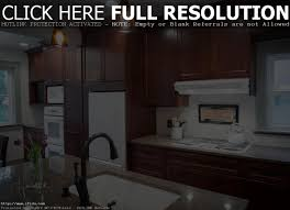 kitchen tampa flooring company titandish decoration