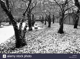 art institute garden in winter chicago illinois black u0026 white