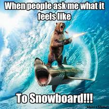 Ski Meme - 108 best for fun ski memes any ski memes images on pinterest