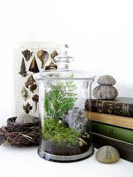 35 best Apothecary Jars images on Pinterest
