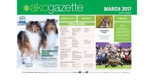 belgian sheepdog akc akc gazette march 2017