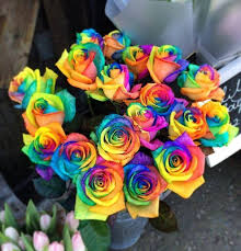 multicolored roses send flowers internationally flowers ie send flowers world
