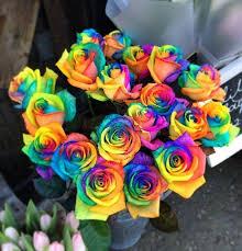 multi colored roses send flowers internationally flowers ie send flowers world