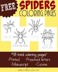 types spiders coloring pages free printables