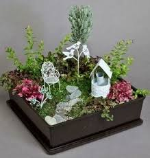 Indoor Gardening Ideas Indoor Garden Ideas Simple Garden Idea For The Garden
