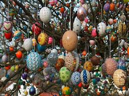 easter egg tree the easter tree decorated with thousands of easter eggs