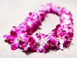 flower leis fresh hawaiian flower leis